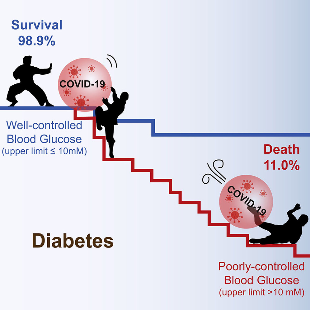 Survival rate graphic with diabetes and COVID