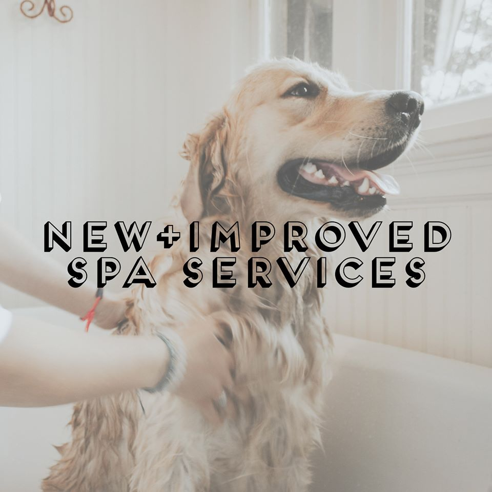 Improved Spa Services