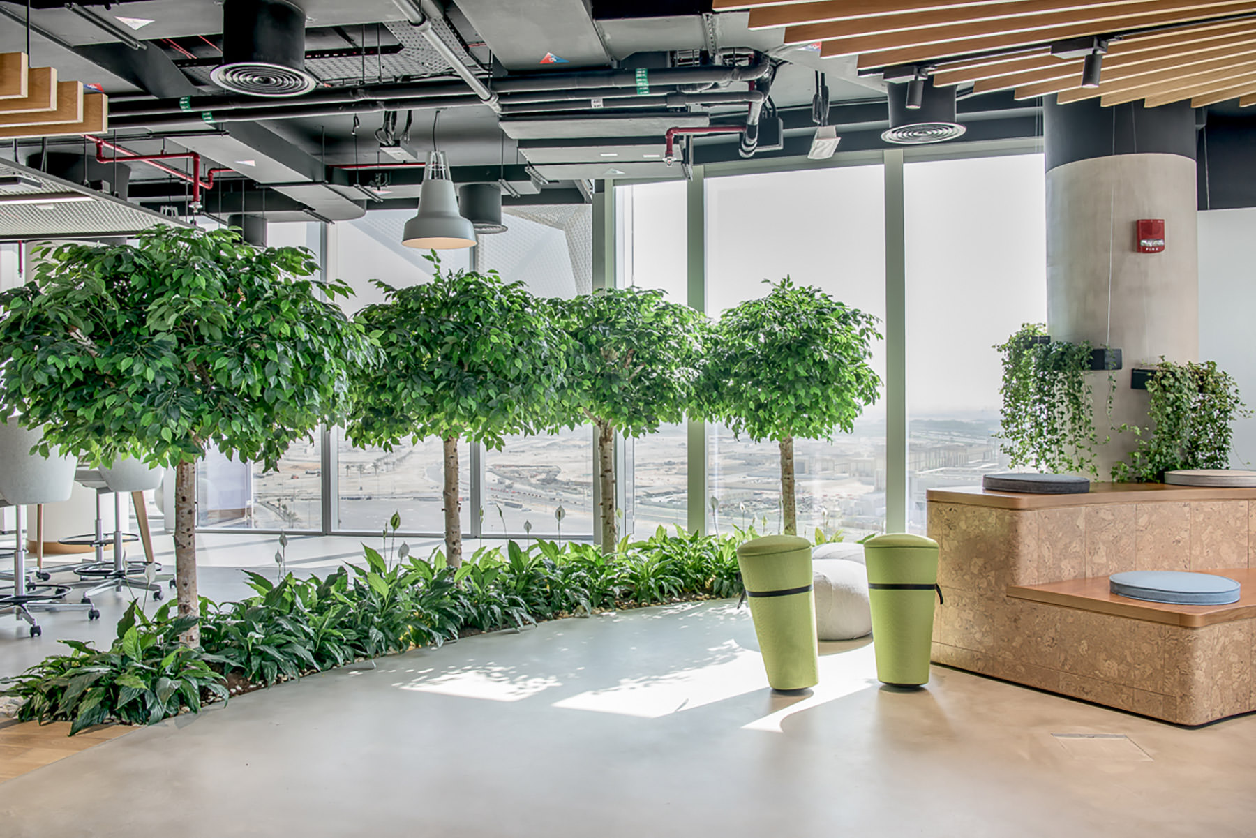Meeting Area with Trees by Planters