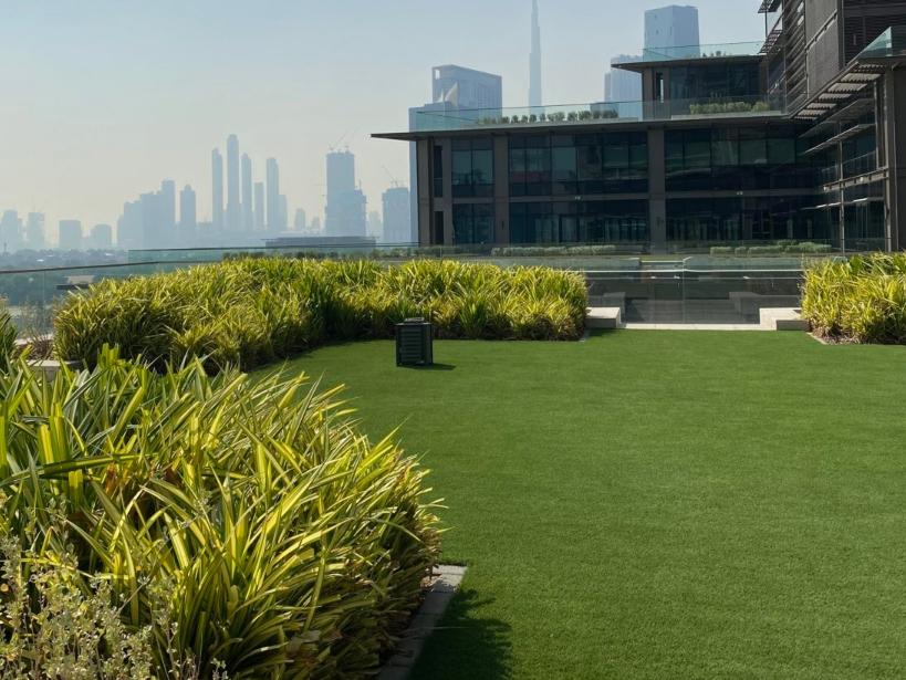 Landscape In Dubai