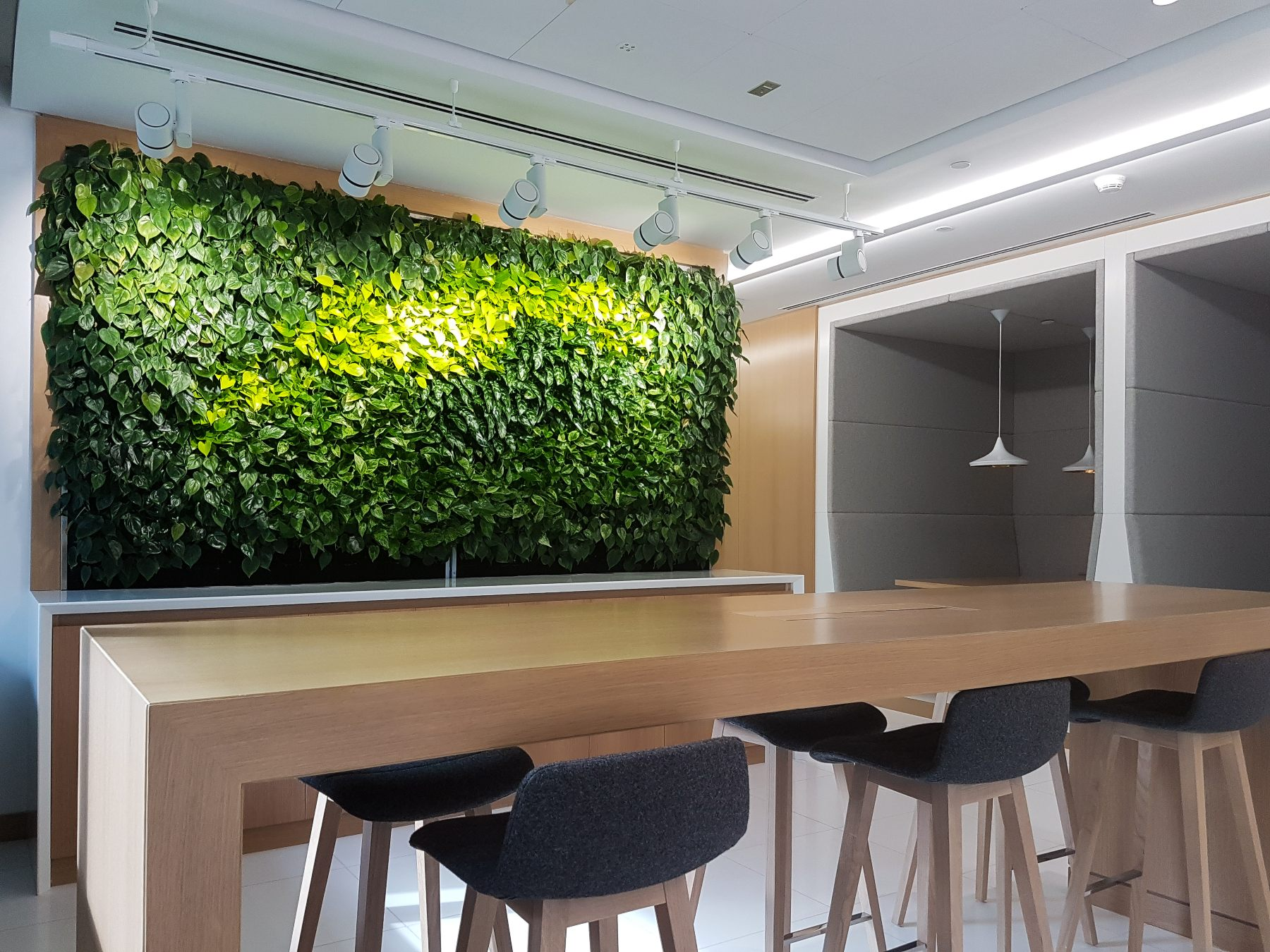 Green Wall from Planters