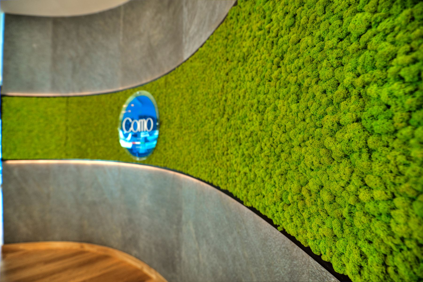 Moss Wall From Planters
