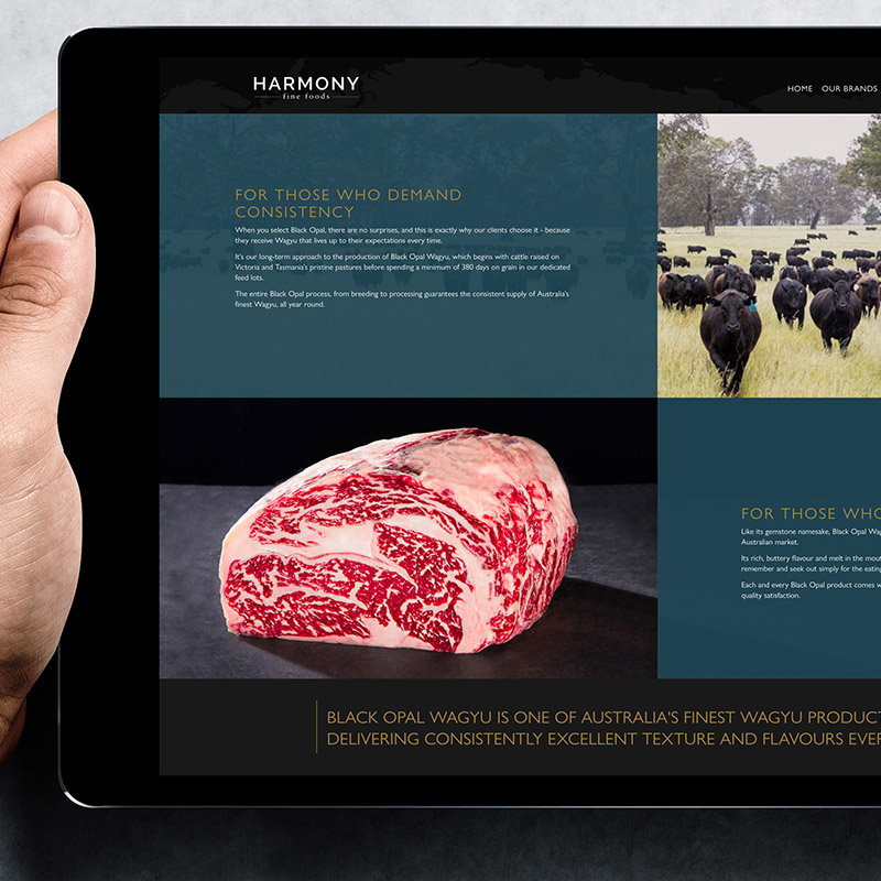 Harmony Fine Foods Website