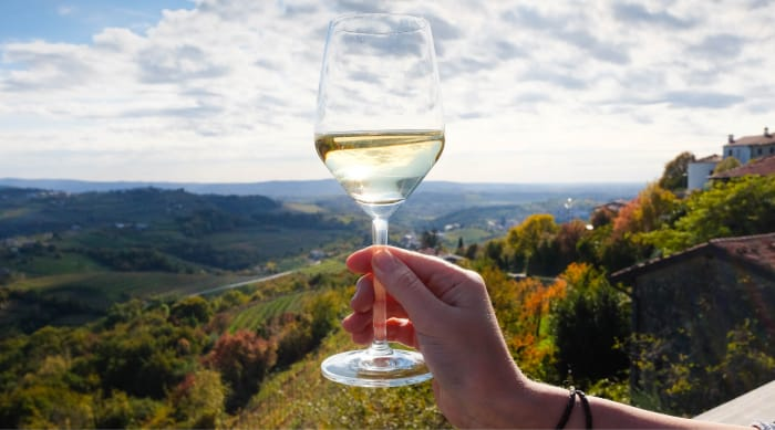 What Kind Of Wine Is White Wine?