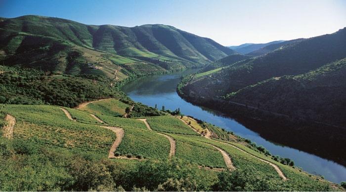 Port Wine Regions