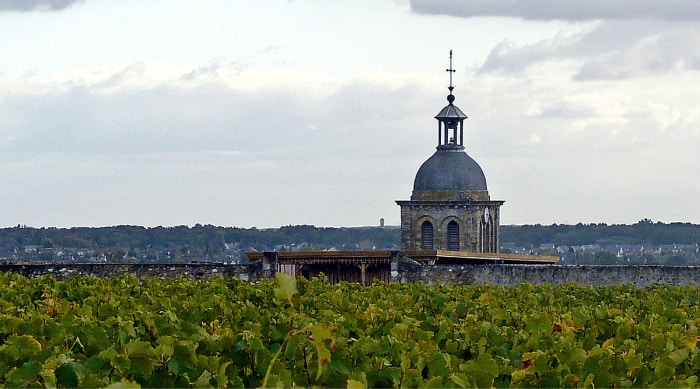 All You Need to Know about the Vouvray Wine Region