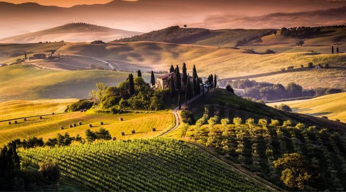 The Montalcino Wine Region and Wine Styles