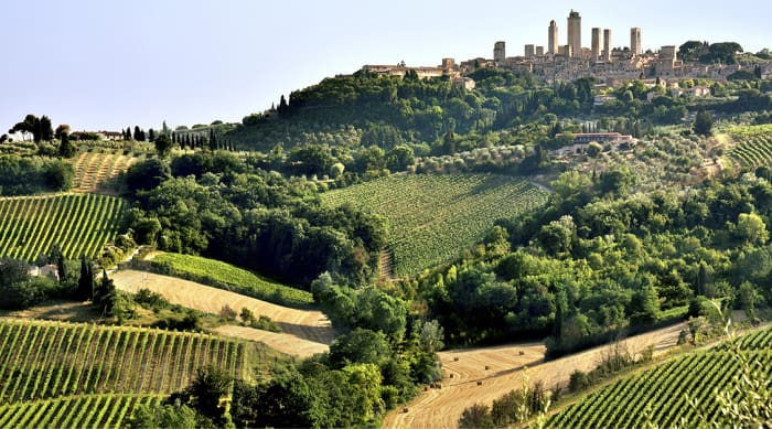 Where Does Sangiovese Come From?