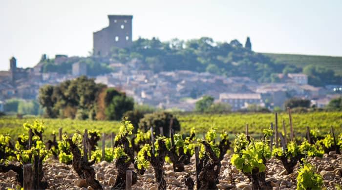 Cotes du Rhone wine: Châteauneuf-du-Pape
