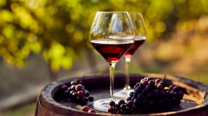 Antinori Tignanello Wine Grapes and their Flavors