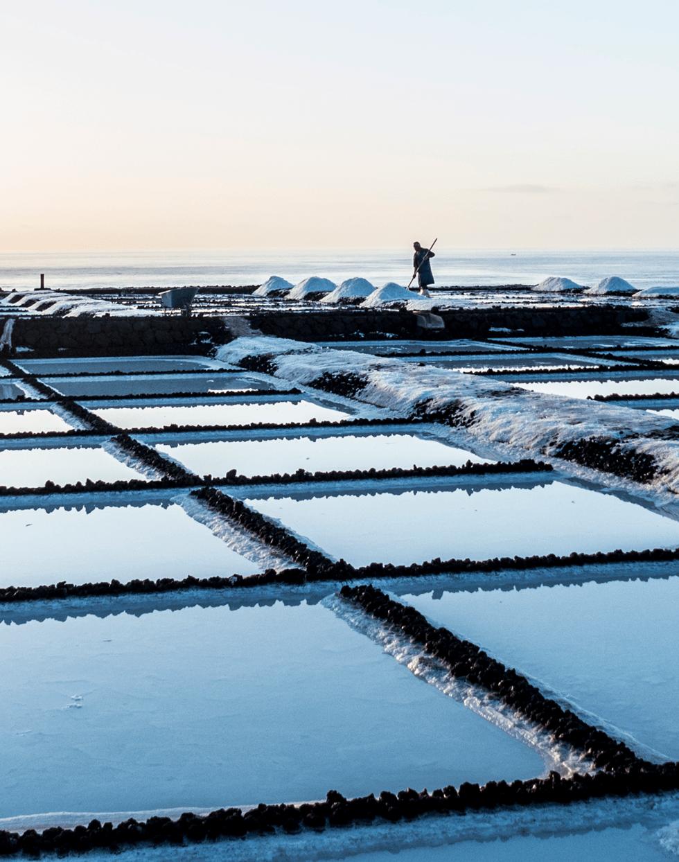 Saltslettene ved Faro de Fuencaliente