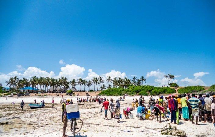 En fest i farger og fiskelukt finner plass på stranden når dagens fangst  skal veies og fordeles.