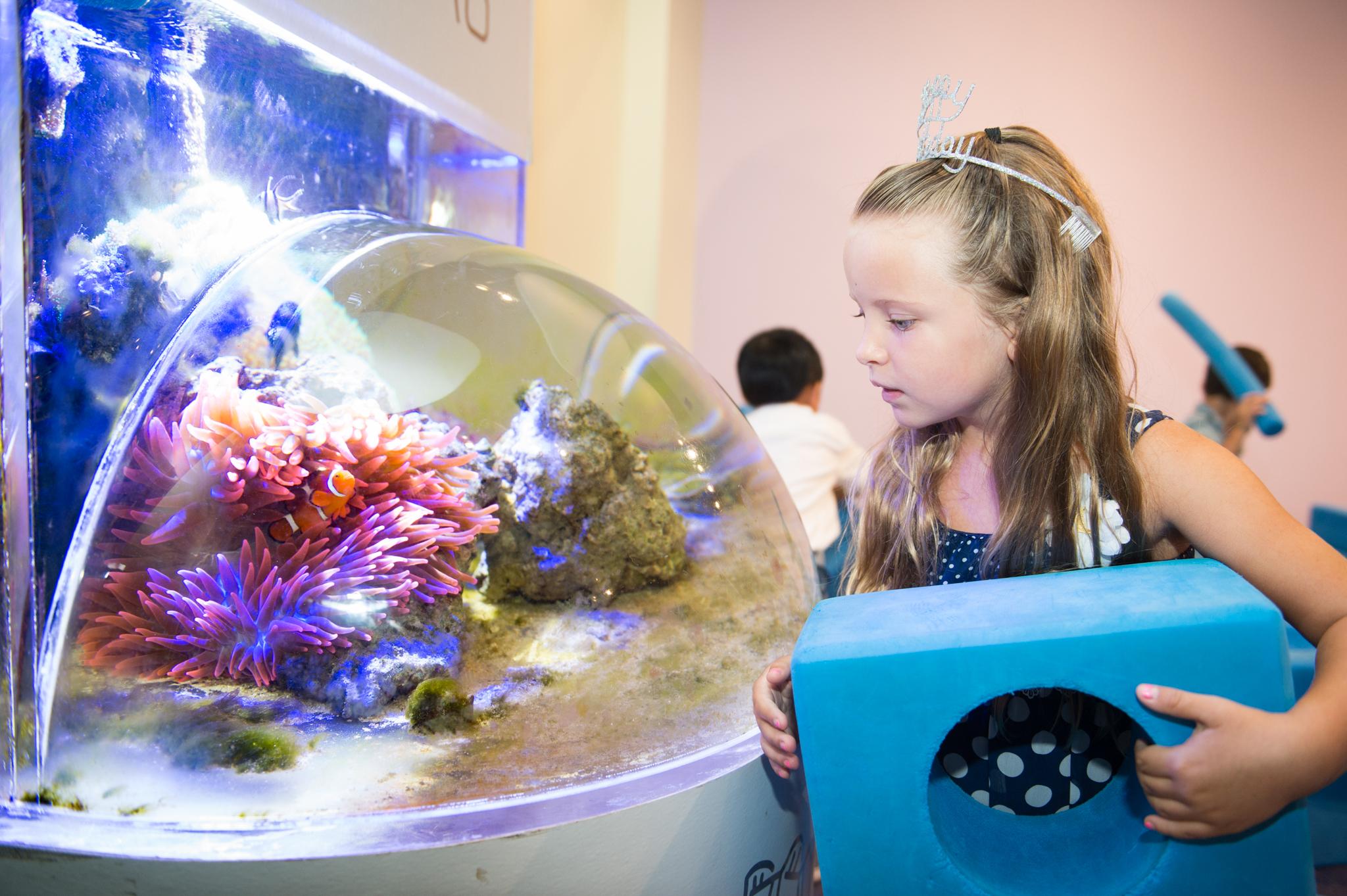 Childrens Science Center Website Image