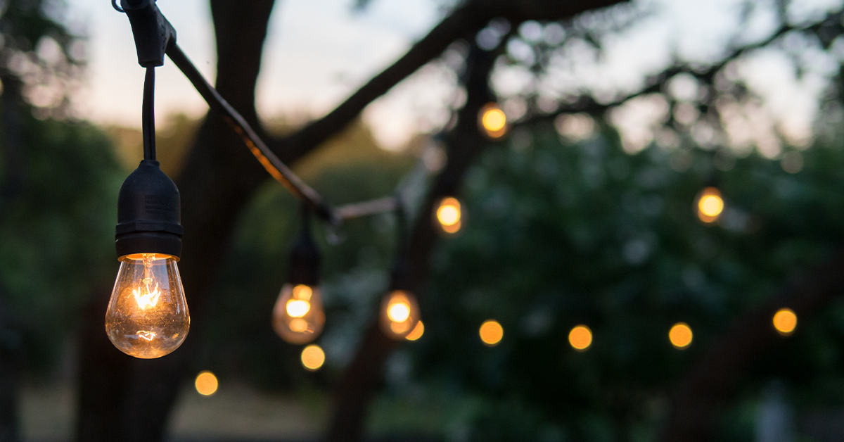 Best Lights for Outdoor Trees