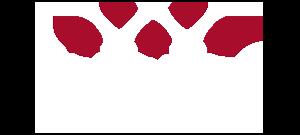 black binwise logo