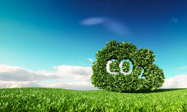 Low Carbon Scene