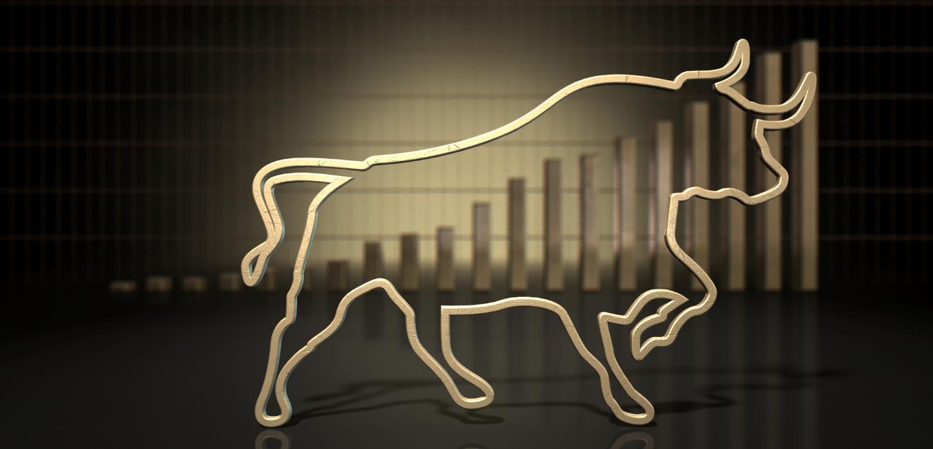 Hidden Bull Market