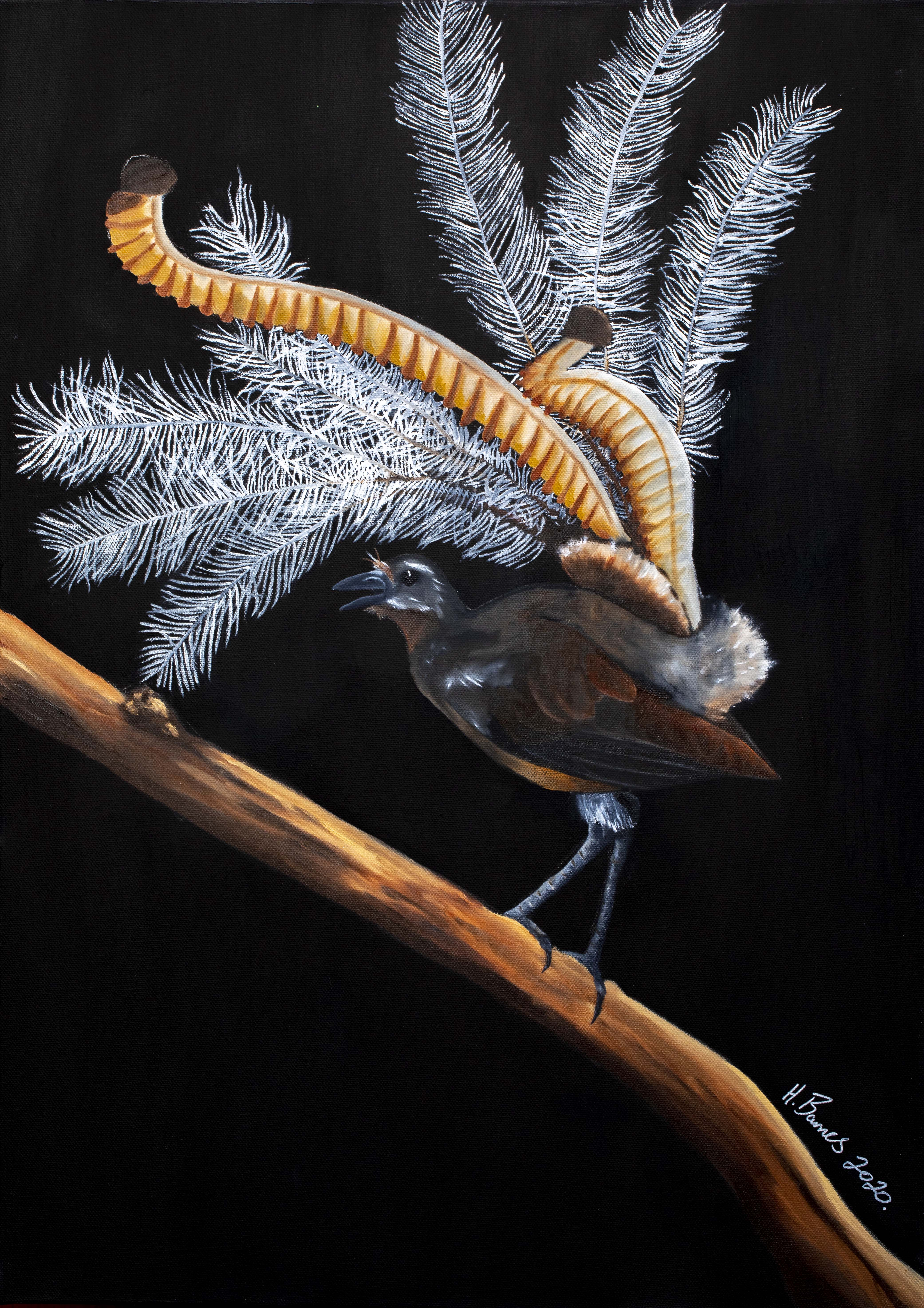PRESALE SPECIAL Guest Artist Hunter Barnes - Lyrebird