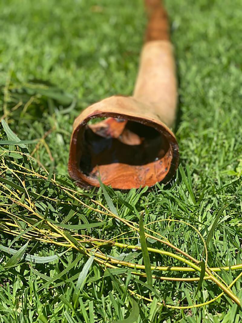 Yellow Boxwood Unique Didgeridoo - Khan Barnes
