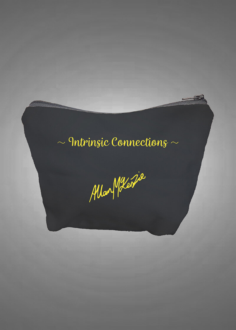 Intrinsic Connection Cosmetic/Purse Bag