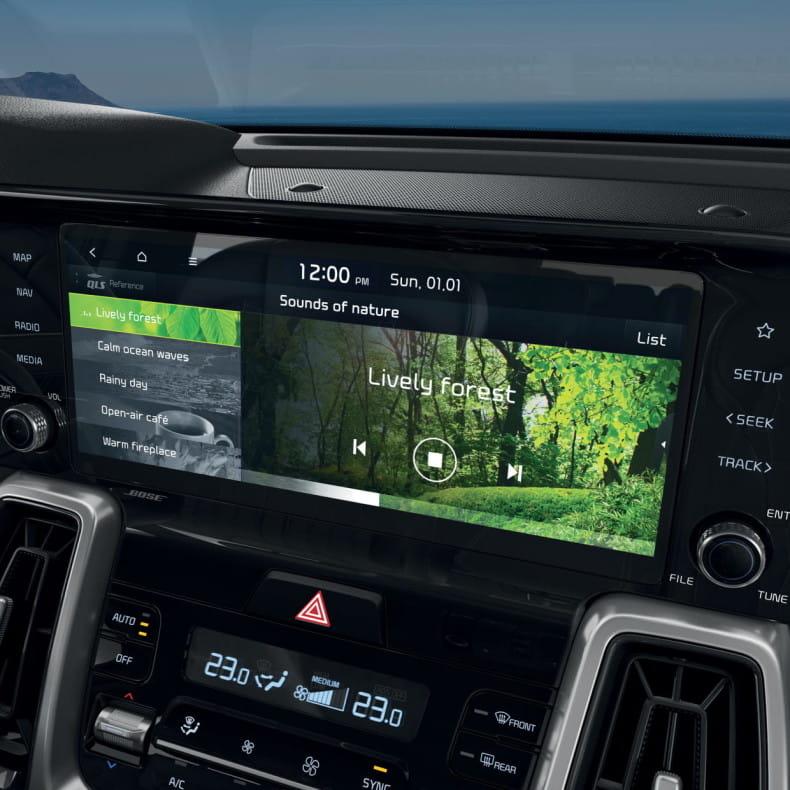 PIO навигационная система 10,25