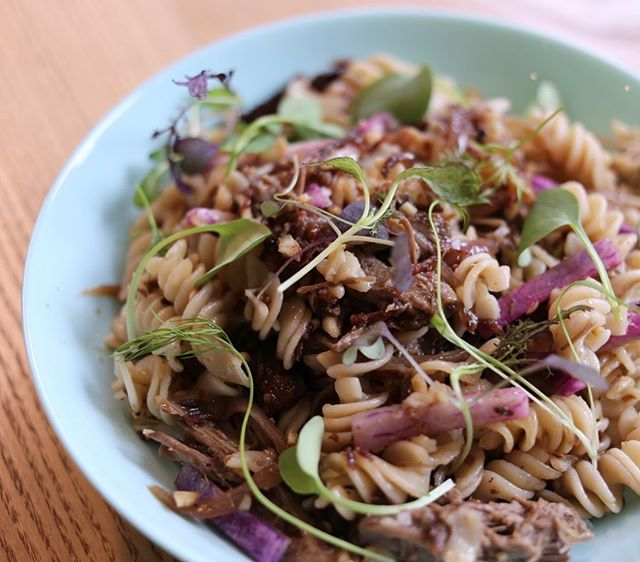 New lunch menu dish! Duck Carnitas and Pasta. Pasillas Mixe peppers give it an earthy kick, fermented celeriac and beets add zing and a sprinkling of @moonvalleyfarm micro-greens salad brings the taste of spring. We've got a super umami mushroom conserva for our veggie friends too! Look for a similar new dish with grits on our supper menu. #glutenfreepasta #lactofermented #mushroomconserva #duckcarnitas #pasillamixe @bonappetitmag @dartagnanfoods @jovialfoods