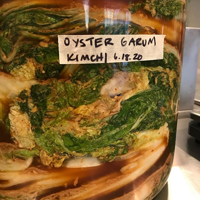 Most of our pickles are pure veg and celtic sea salt, but we made an oyster garum back in January so we've blended that into a paste with pasilla chiles, garlic, ginger and rice flour to make a napa cabbage kimchi that will be packed with earthy umami flavors. Check back in a couple of weeks! #oystergarum #kojigarum #garum #nomaguidetofermentation #pasillamexicana #kimchi #napacabbage #microbemagic #lactofermented @culturesgroup