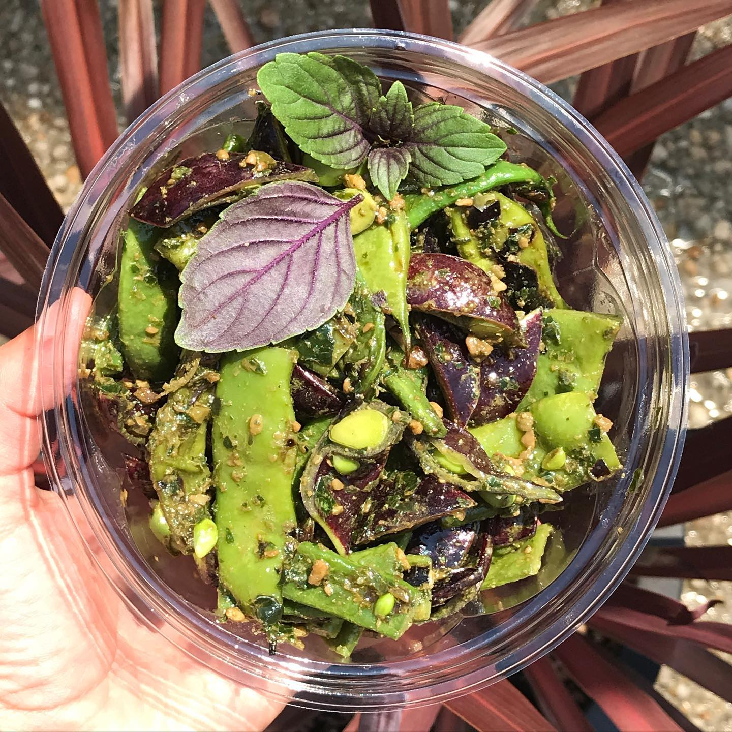 Summer salads are here! Grilled Romano beans from @gooddogfarm and @lancasterfarmfresh Beauregarde purple snow peas tossed in a vegan pesto made from @moonvalleyfarm African blue basil, sunflower seeds, mustard greens, and pickled kohlrahbi. As delicious as it is beautiful. #picnicfood #summerbounty #beauregardesnowpea #romanobeans #grilledveggies