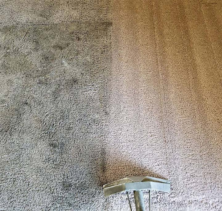 Carpet cleaning in progress in Pasadena, CA