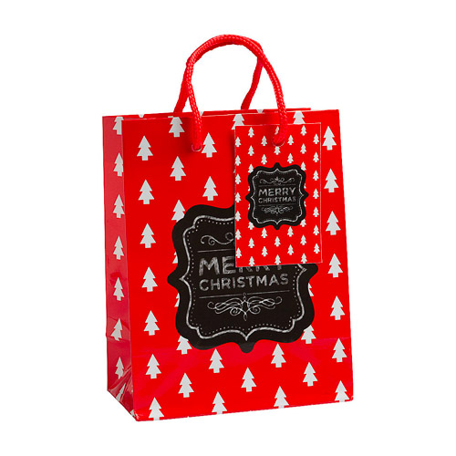 The Reject Shop - Gift Bag Small
