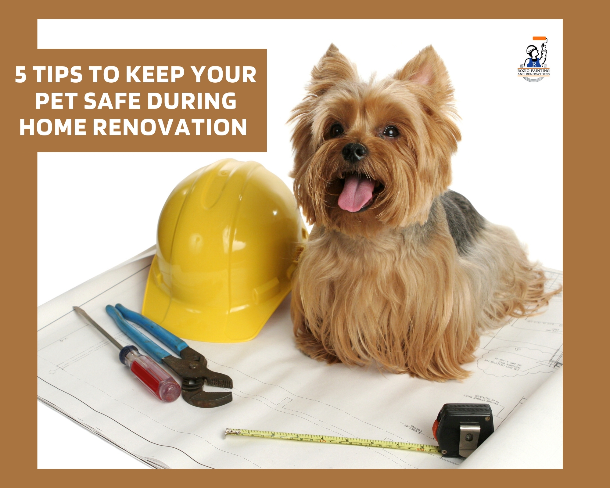 5 Tips to Keep Your Pet Safe During Home Renovation