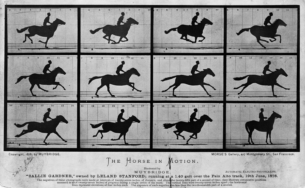 Muybridge The Horse in Motion time lapse