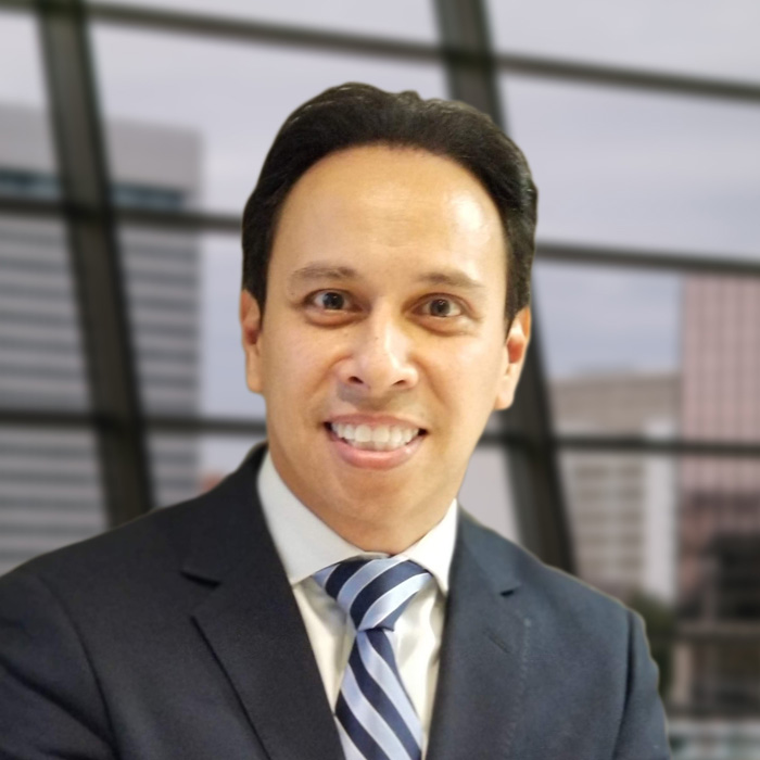 Daniel Verret - CEO, Adacel