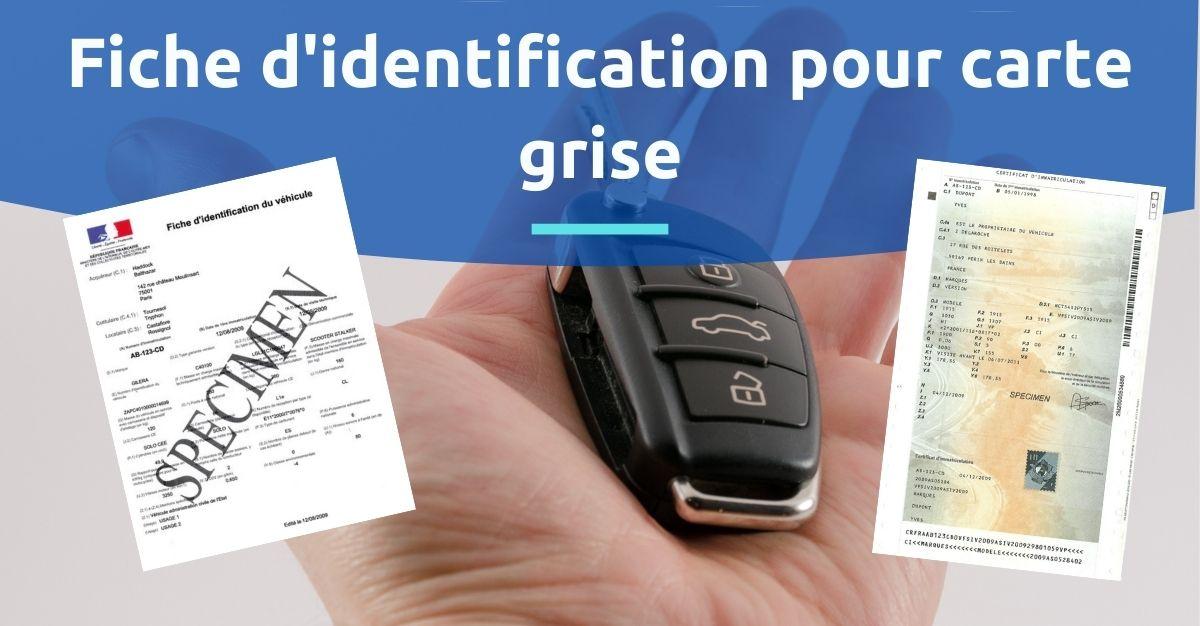 Fiche d'identification carte grise