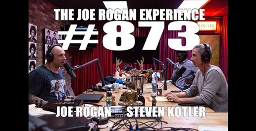Steven on the Joe Rogan Experience