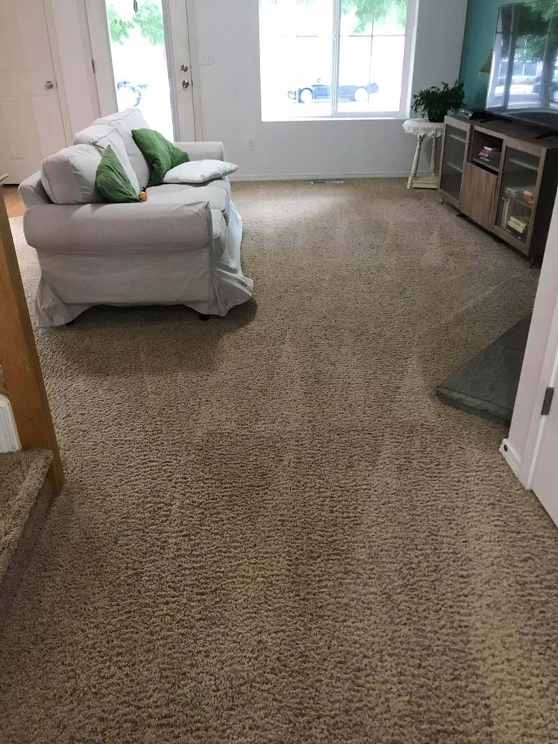 Residential Cleaning project in Battle Ground, WA