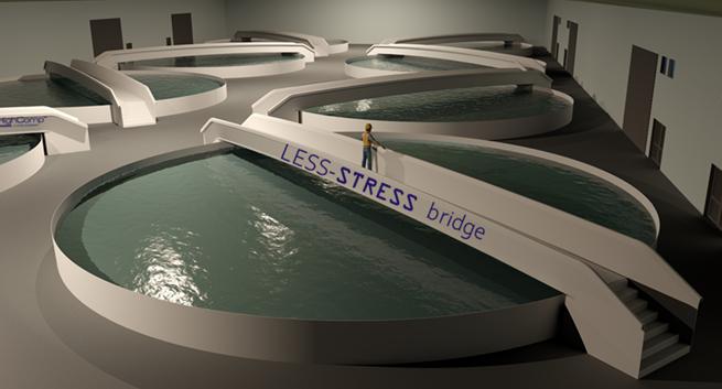 HighComp LESS-STRESS™ walk-way-bridge