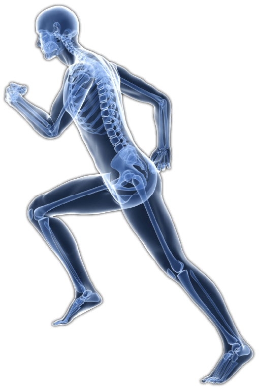 Advanced Corrective Chiropractic Graphic