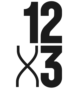 12 x 3 logo