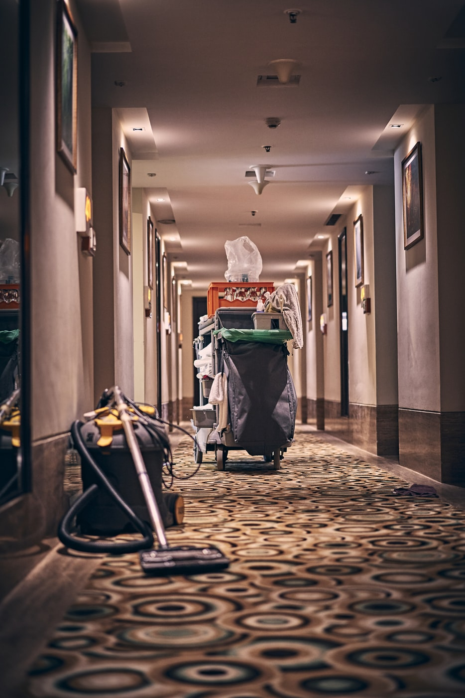 The 8 Best Upright Vacuums To Buy In 2020