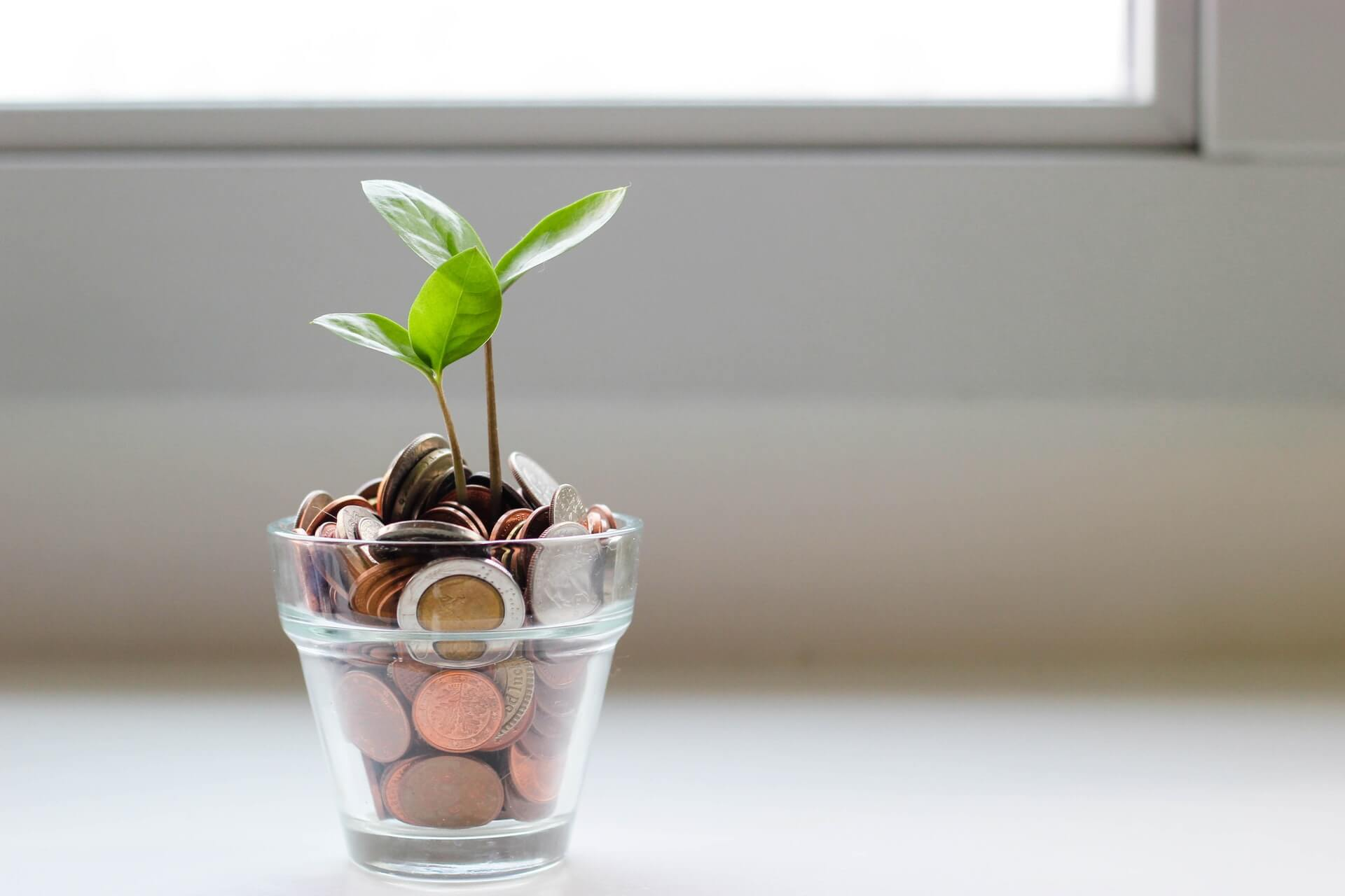 a glass full of money to invest and a tree growing out of it