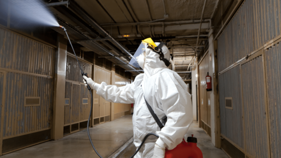 professional cleaner in white suite fogging a commercial building