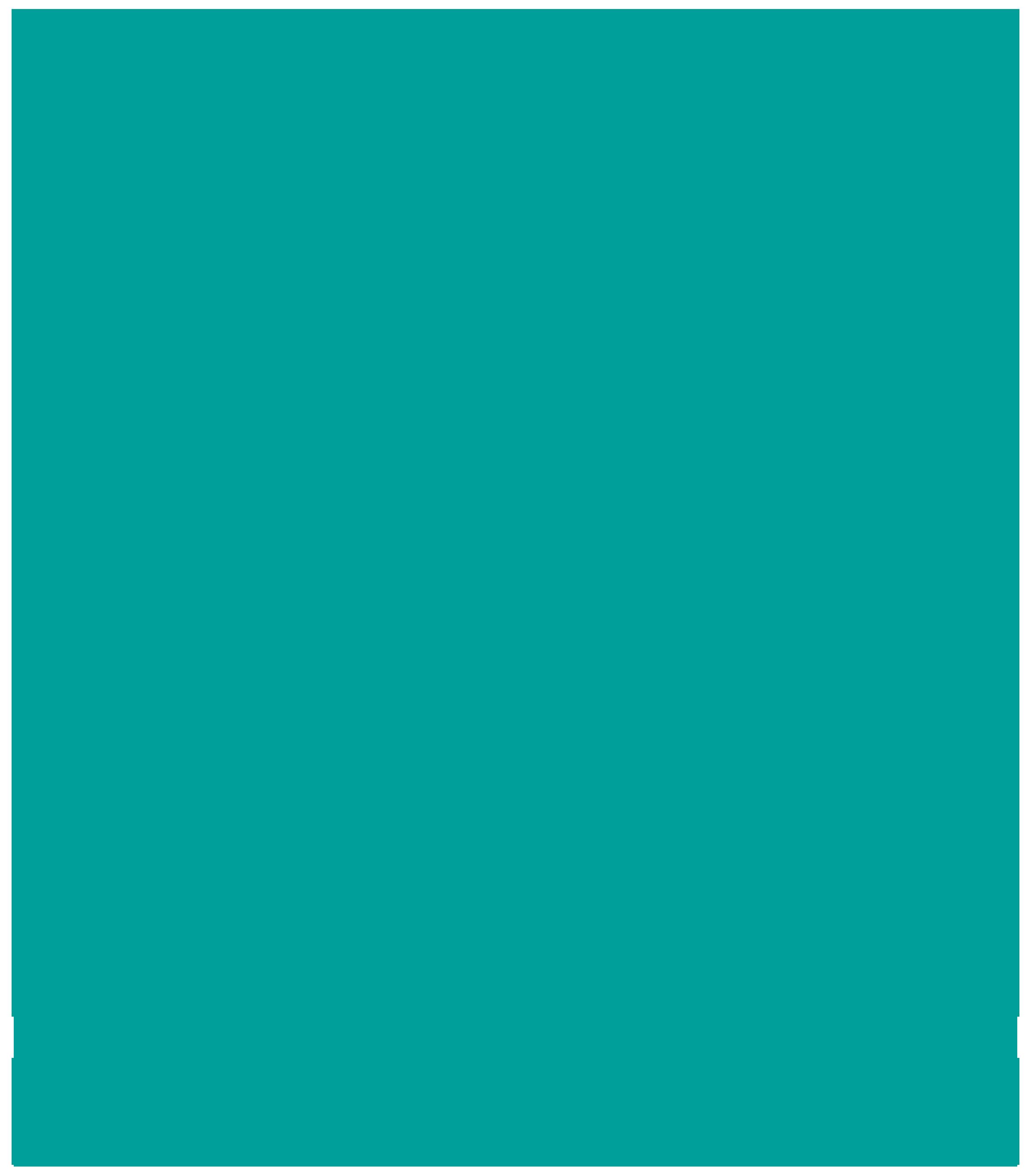 Bedstuy Restoration