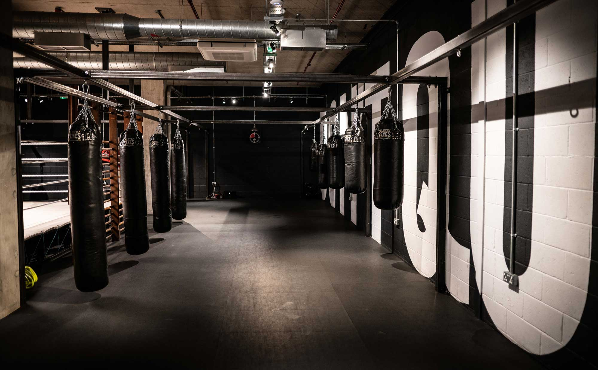 view of punching bags in 12 x 3 gym Paddington