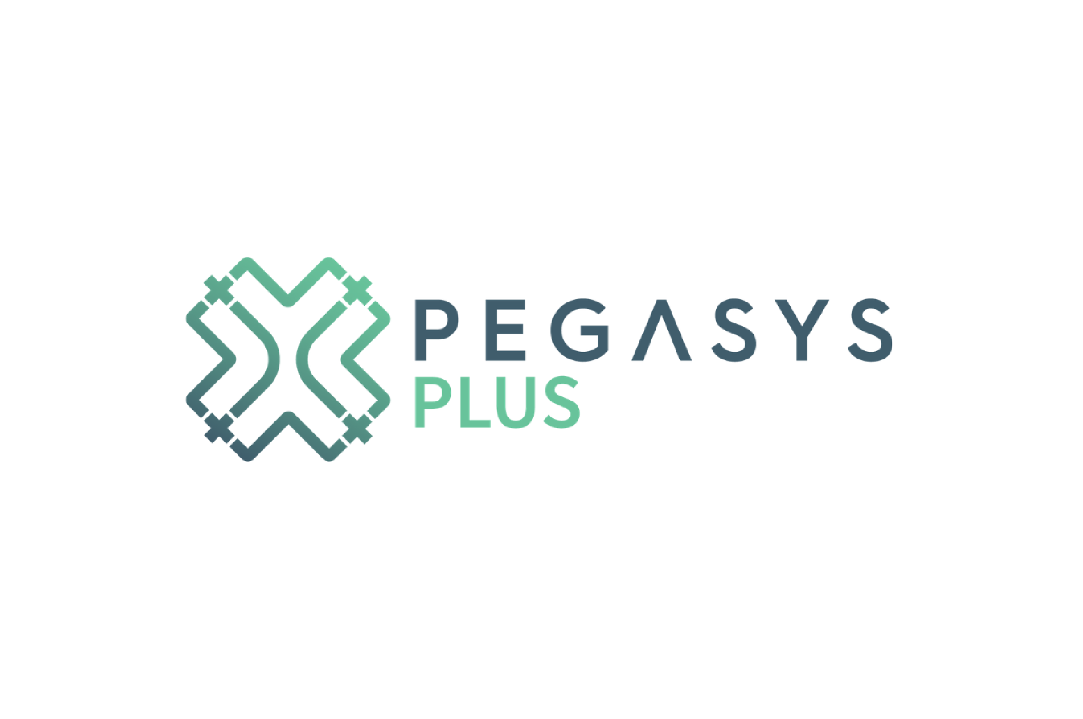 PegaSys Plus icon