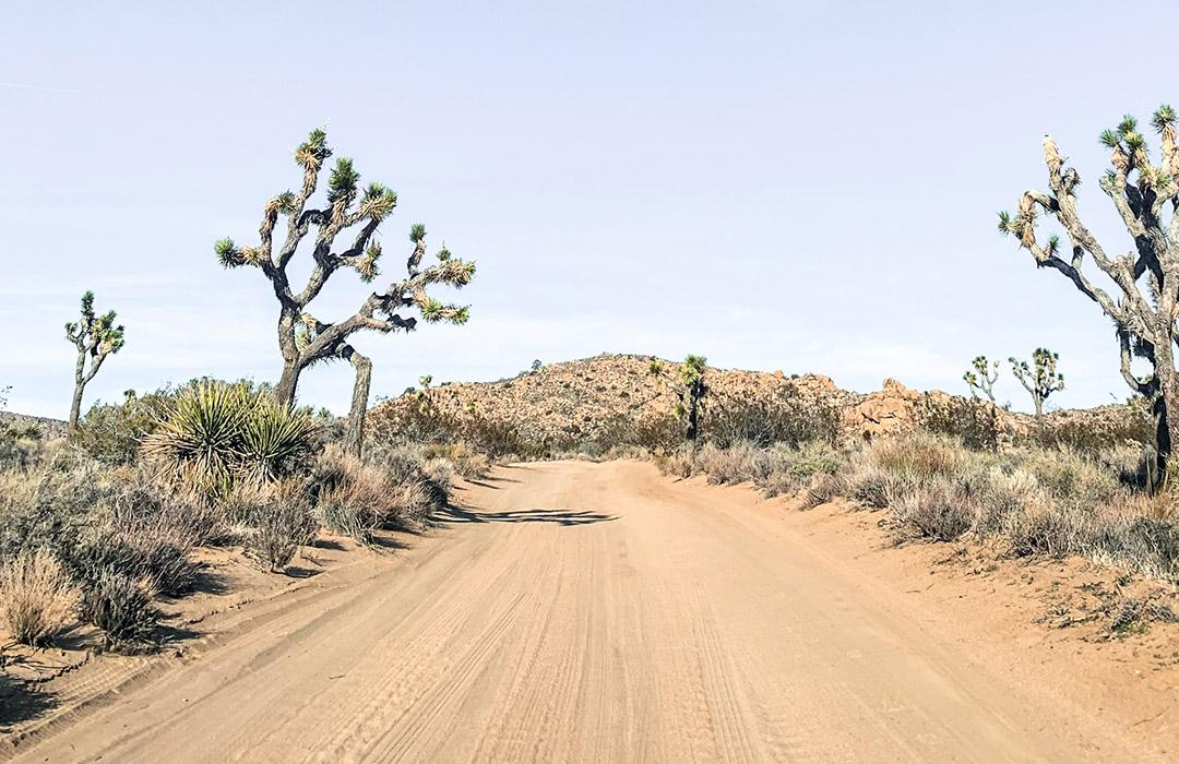 Wide open unpaved roads in Joshua Tree