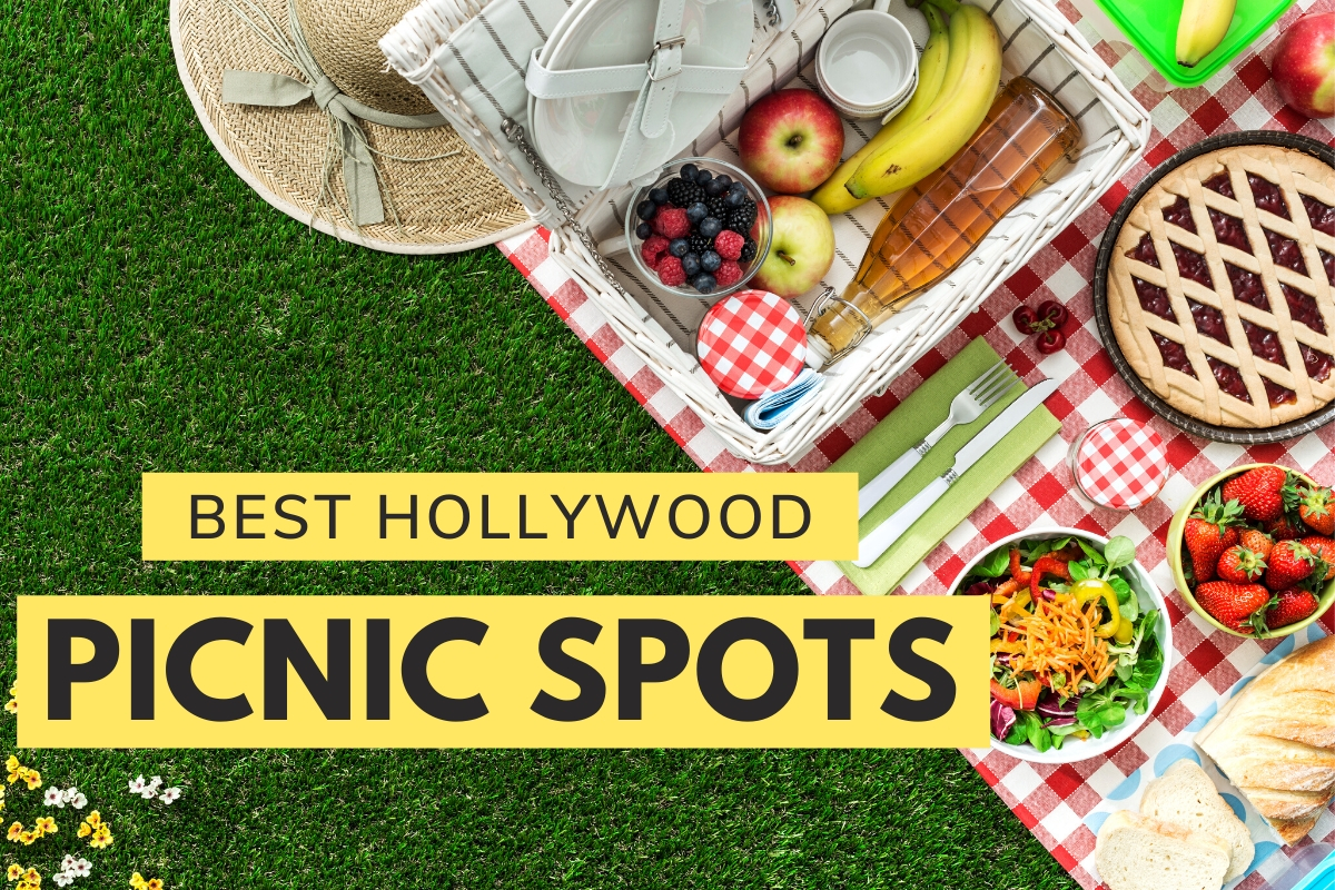 Best Hollywood Picnic Spots
