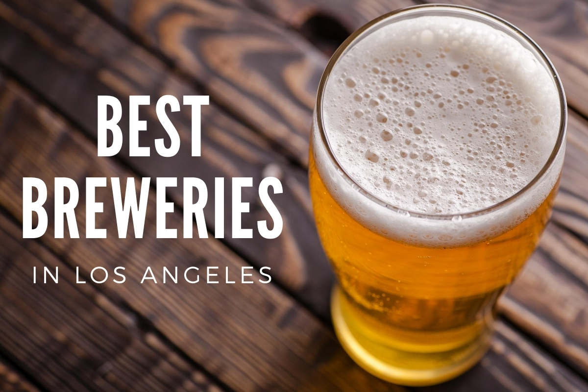Cup of freshly brewed beer - Best Breweries in LA
