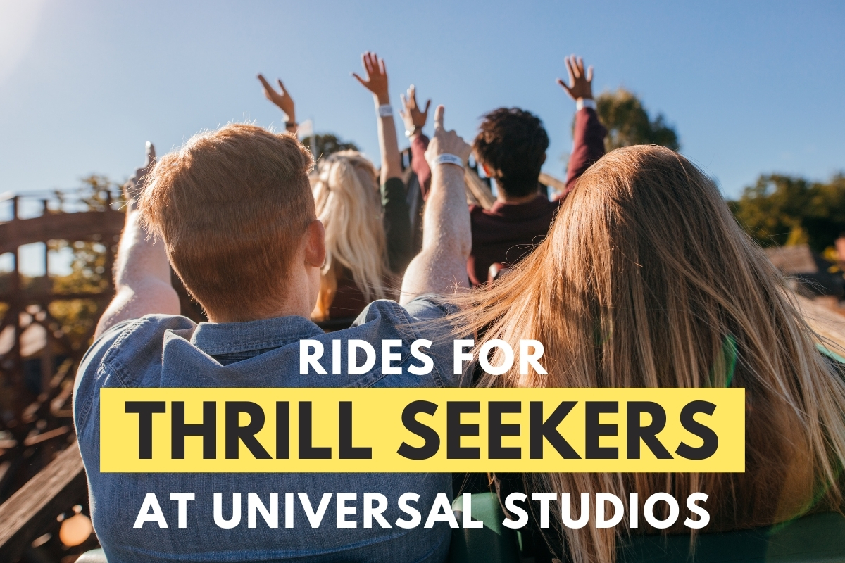 Rides for Thrill Seekers