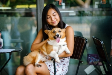 Woman holding a corgi at a restaurant
